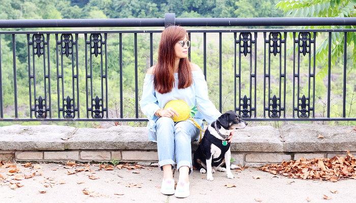 Zaful off shoulder top, pineapple bag, distressed jeans, Louis beagle dog