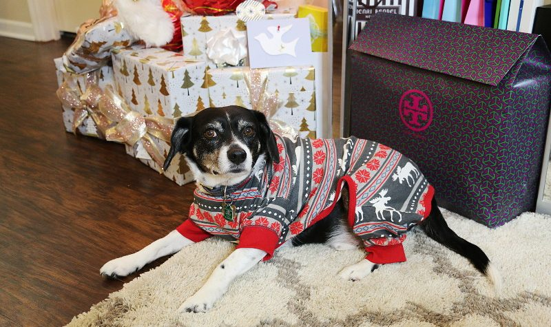 Christmas pajamas, dog pajamas, pets pajama, onesies, Lazy One Inc