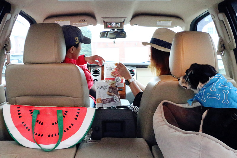 7 Ways to Make Road Trips Fun and Memorable