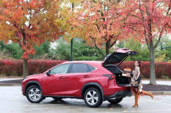 Safe Holiday Travels with the Lexus NX 200T