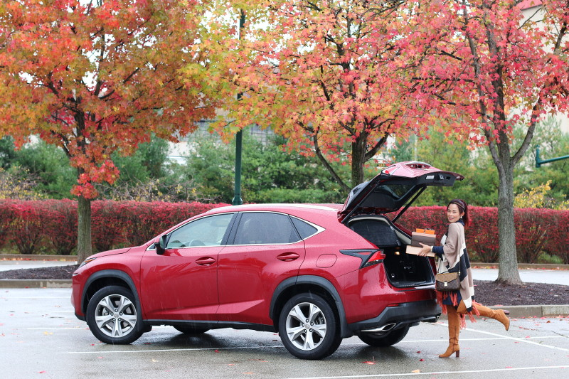 holiday, fall, travel, Lexus NX 200T