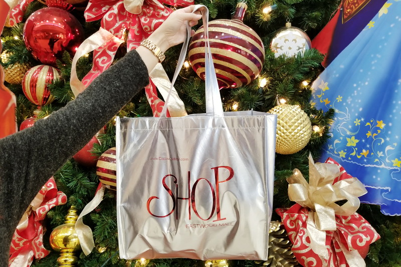 Shop Eastwood Mall Complex Ohio, shopping bag, holiday gifts