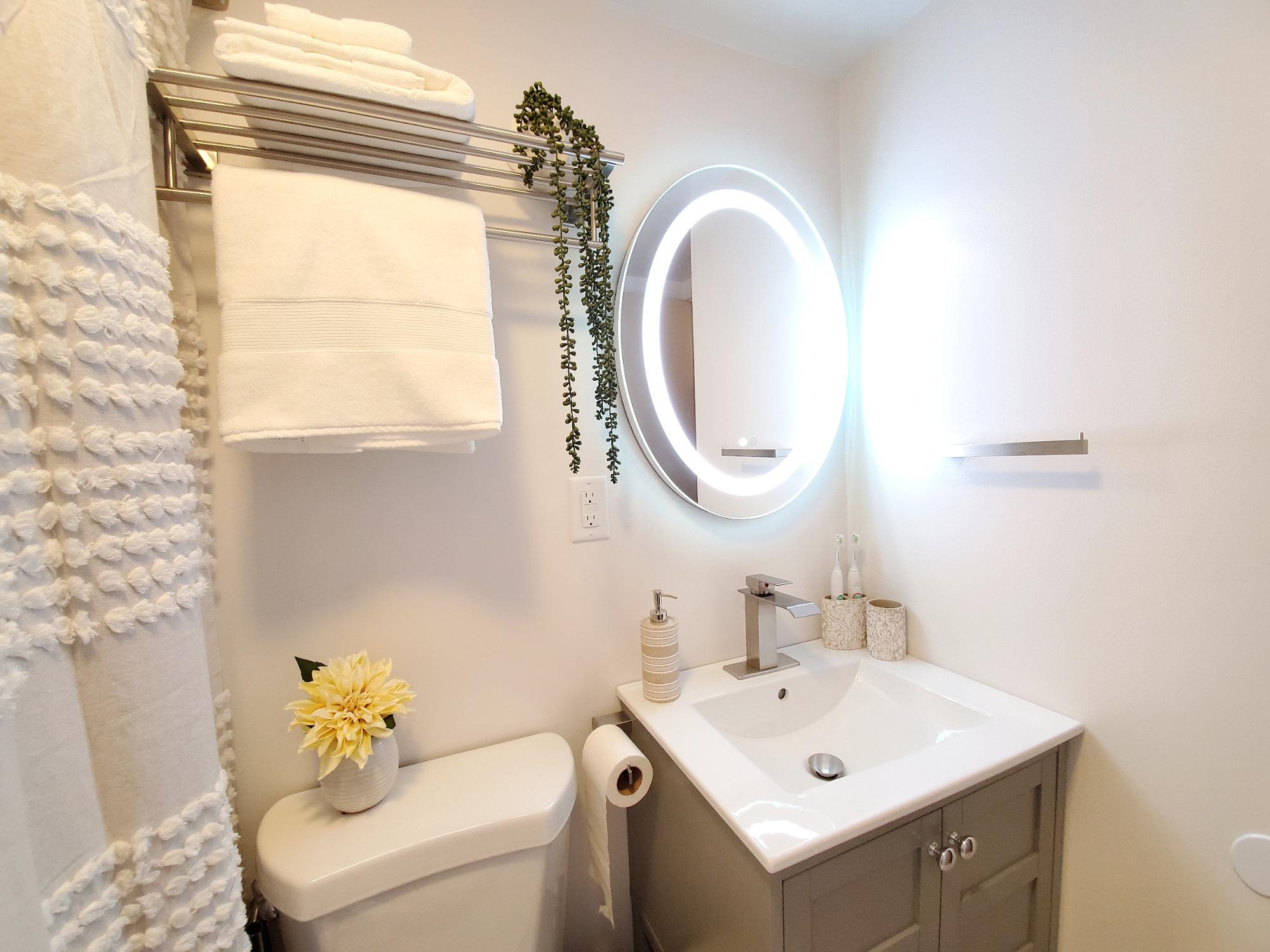Lake House Bathroom Renovation, Small Lake House Bathroom Ideas